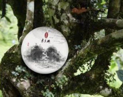 广州求真号品牌VI设计