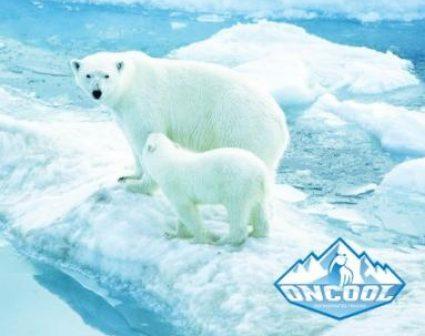 ONCOOL冷链标志设计