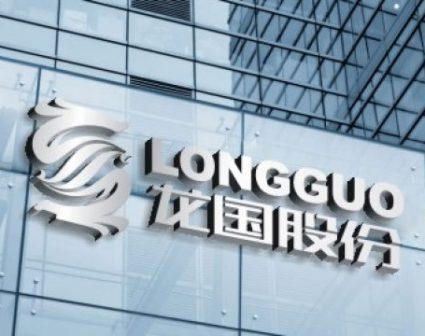 龙国股份LOGO设计
