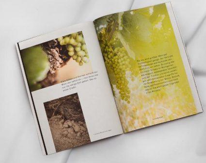 KIRNBAUER葡萄酒品牌画册设计