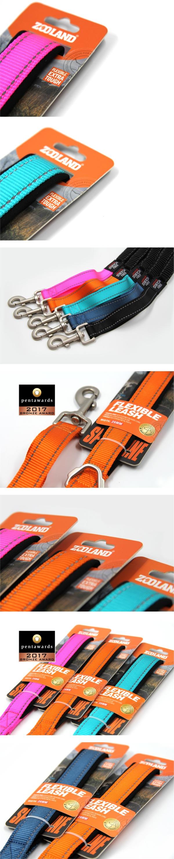 FLEXIBLE LEASH 包装设计