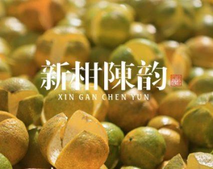 新柑陈韵字体logo设计