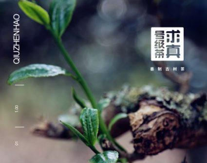 求真号级茶品牌VI设计