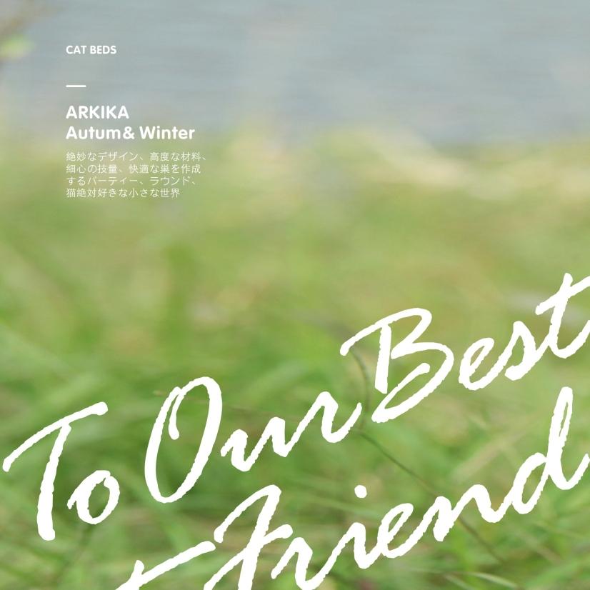 ARKIKA宠物品牌画册设计