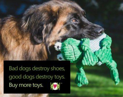 HUggleHOuNDS 宠物玩具画册设计